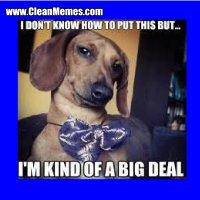 weiner dog big deal.jpg