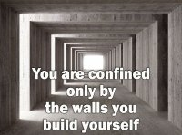 You-are-confined-only-by-the-walls-you-build-yourself.jpg
