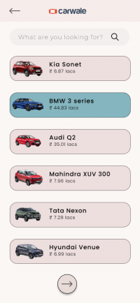 Step 4- Filtered car options.png