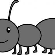 Stoic Ant