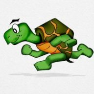 TurtleSprint